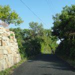 西側道路(周辺)